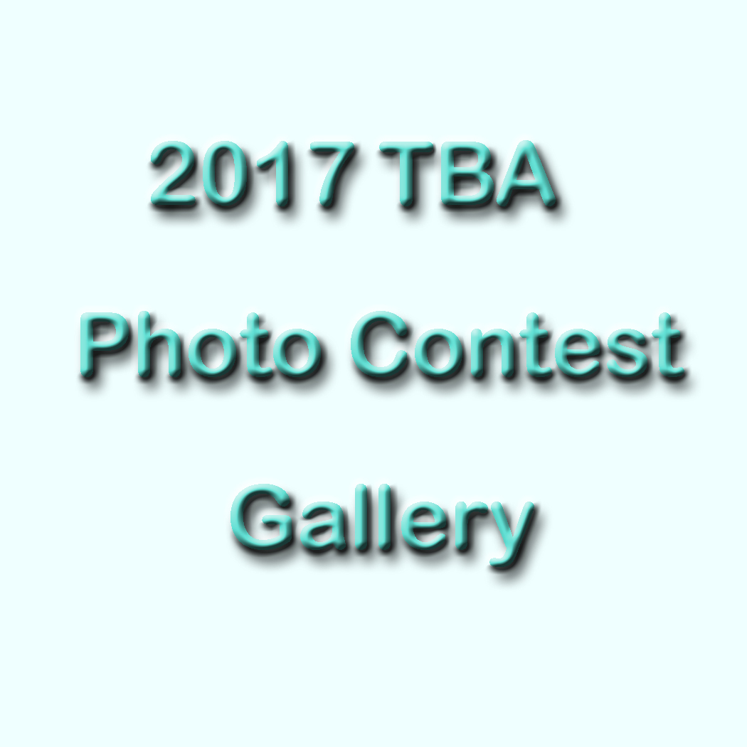 Photo Contest Gallery
